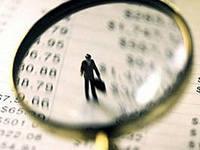Налоговая проверка индивидуального предпринимателя