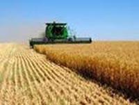 Единый сельскохозяйственный налог (ЕСХН) в  2018  году