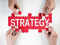 Возможности применения эталонных стратегий развития бизнеса