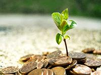 Инвестиции в российский малый бизнес: особенности, проблемы, перспективы