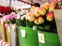 Продажа живых цветов