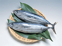 Открываем рыбный магазин