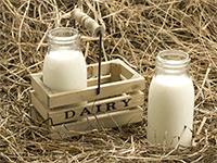 Продажа молока