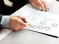 Структура бизнеса организации: принципы и виды