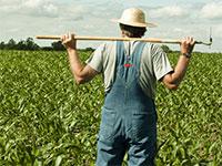 Фермерское производство